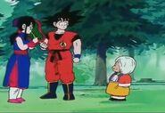 DB Chi-Chi y Goku reciben la miel octágono