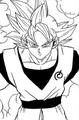 Goku Chapter 73 Mastered UI
