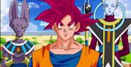 Bills, Wiss y Goku SSJD Episodio 9