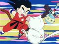 Gokû vs Karin