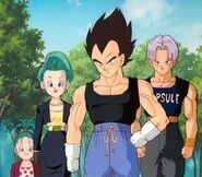Vegeta,trunks, bulma and bra
