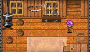 Thieves Den room