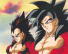 Goku e Vegeta SS 4.jpg