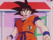 Goku49