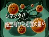 Episodio 9 (Dragon Ball GT)