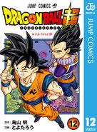 Volume 12 (DBS) Cover digitale