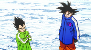 Goku and vegeta winter suits broly.png