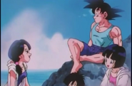 Goku,Videl,Pan y Milk en la playa