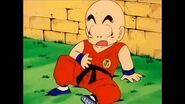 """Dragonball - """"I didn't understand a word you said"""""""