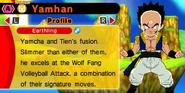 DB Fusions Fusion Character Tiencha (Tien + Yamcha - Profile)
