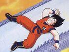 Goku zzzzzzz