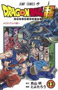 Volume 13 (Super) Cover
