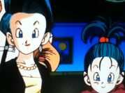 Bulma and Bra