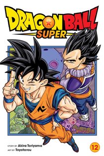 DBS Volume 13 English Cover.png