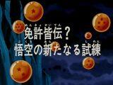 Uma prova muito difícil para Goku!