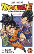 Volume 12 (DBS) Cover