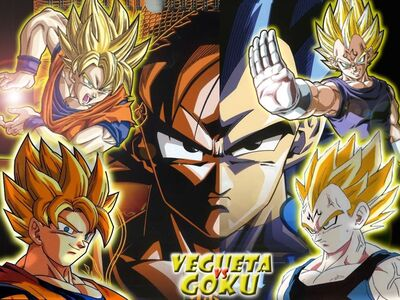 Goku vs vegeta 2.jpg