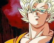 Goku48