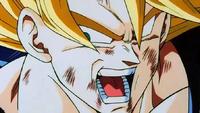 Goku fin dbz.png