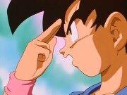 Goku shunkanido