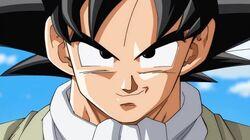 Goku-DBS.jpg