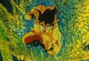 Goku supersaiyajin0