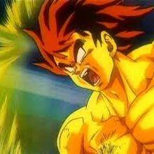 Goku falso.jpg