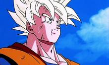 Goku abandonne.png