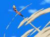 Goku flying Dragon Soul (3)