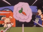 Bulma carota