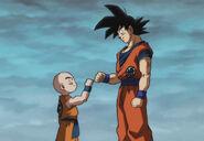 Goku y Krillin mejores amigos