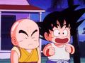 GokuKuririnReadyForTraining