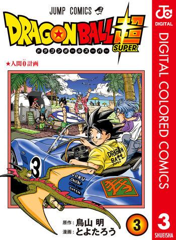 Digital color cover