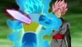 Black Goku vs Vegeta rose