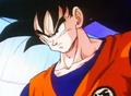GokuPioneer0053