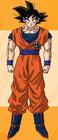Goku - Perfil de la web oficial de toei animation