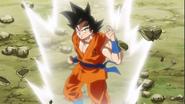 Goku se prepara para el combate