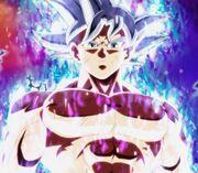 Goku-MMI-maitrise.jpg
