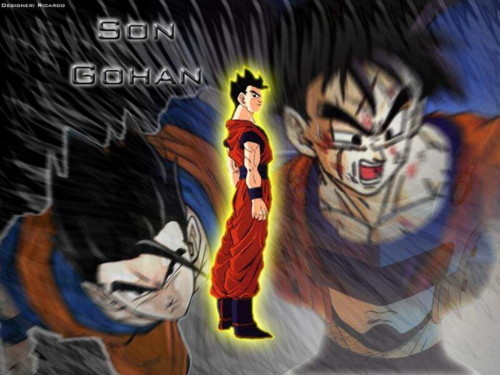 Gohan (SW)