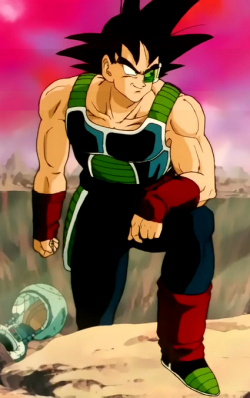 Bardock (Power ranger)