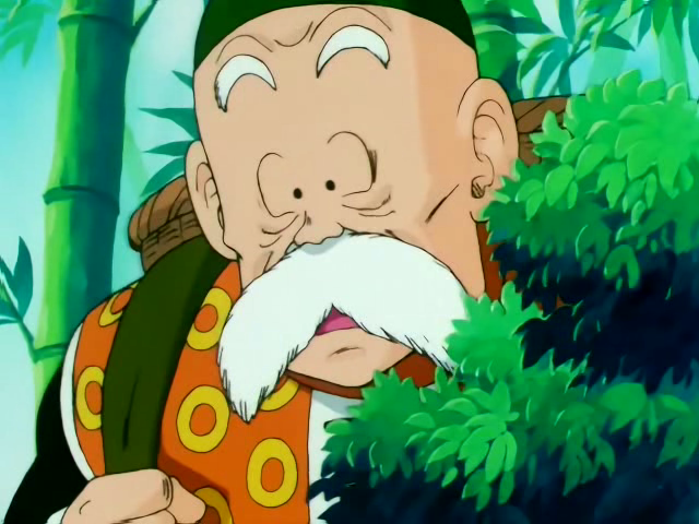 Grandpa Gohan (ANH)