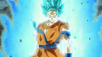 Super Saiyan God (LOTSG)