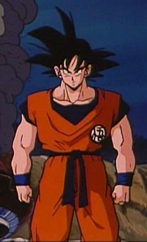 Goku (DBZ:F)
