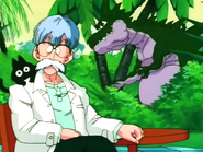 Dr.Brief (Xz)