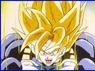 Super Goku