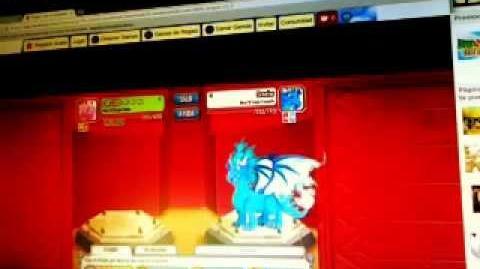 Mis Combates De Dragones En Dragon City