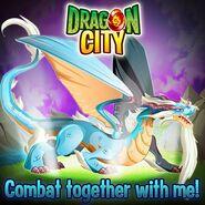 Pure Dragon-2