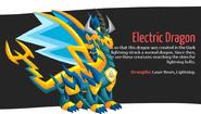 SP-Electric Dragon