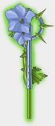 The Flax Key
