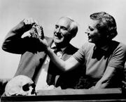 Louis-and-mary-leakey-275-221-10.jpg
